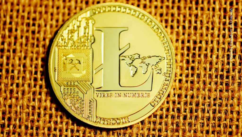 Eine Litecoin-Münze auf Leinwand